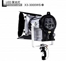 den-led-x3-3000ws-2493